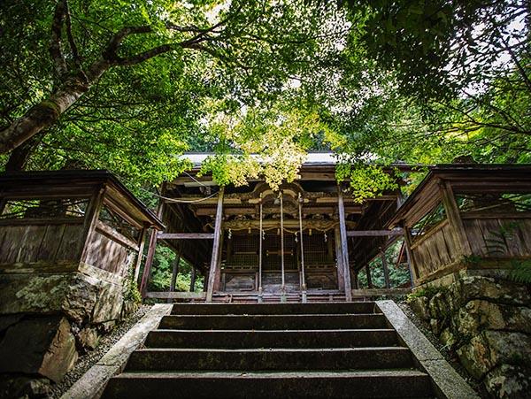 阿上三所神社(本庄)