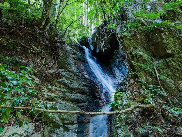 不動の滝(上乙見)