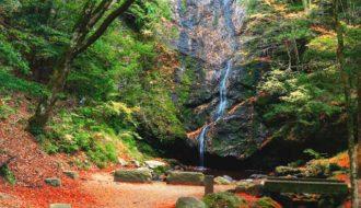 [募集] 第9回京丹波町観光協会観光写真コンテスト京丹波町の魅力写真を募集します!