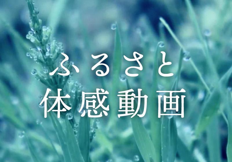 京丹波町ふるさと体感動画