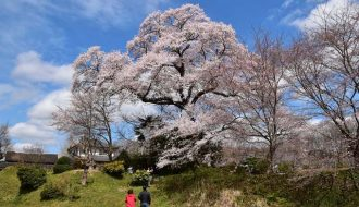 第9回 京丹波町観光写真コンテストの入賞作品が決定しました